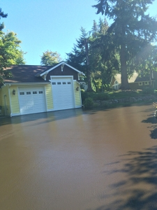 Driveway Patching Services in Issaquah WA - Roads Paving - IMG_2846